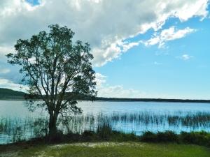 Cudgen Lake. 5 mins away
